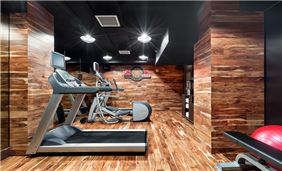 Walker Hotel Fitness Center Nyc